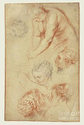 Studies Of Women By Peter Paul Rubens Art Print by Esoterica Art Agency