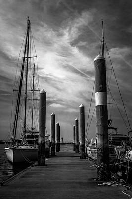 Study In Black And White Marina Landscape Art Print