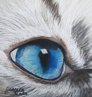 Pastel - Study Of A Cat's Eye by Jessica Kale