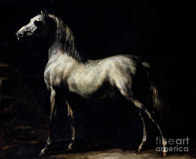 Stand Painting - Study Of A Dapple Grey by Theodore Gericault