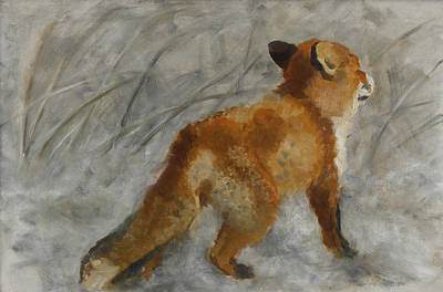 Bruno Painting - Study Of A Fox by Bruno Liljefors