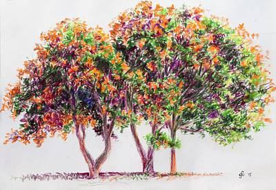 Study Of A Golden Rain Tree Original