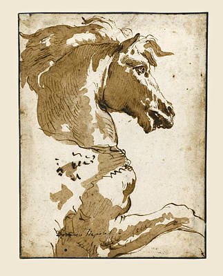 Drawing - Study Of A Horse In Profile by Giovanni Domenico Tiepolo
