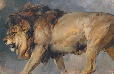 Painting - Study Of A Lion by Edwin Henry Landseer