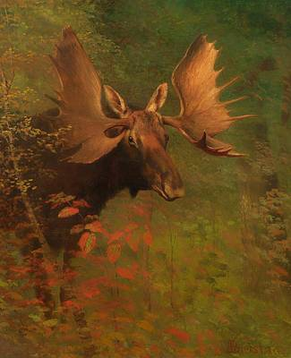 Nature Study Painting - Study Of A Moose by Mountain Dreams