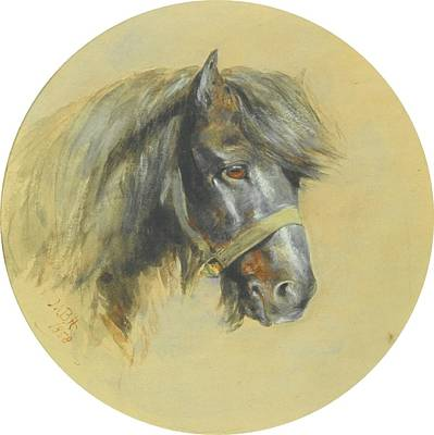 Study Of A Ponys Head Art Print by MotionAge Designs