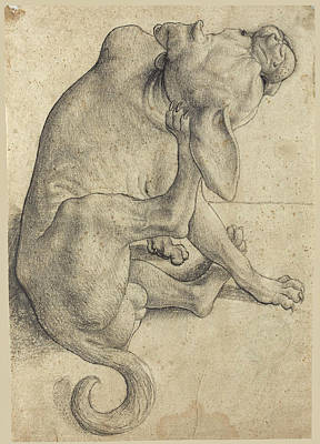 Buy Dog Art Drawing - Study Of A Seated Dog Scratching Himself by German School
