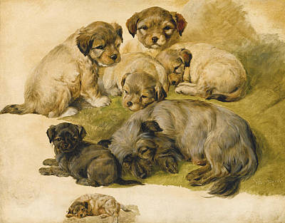 Painting - Study Of A Terrier And Puppies by Circle of Edwin Landseer