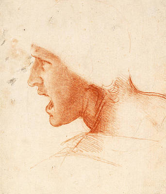 Drawing - Study Of A Warrior's Head For The Battle Of Anghiari by Leonardo da Vinci