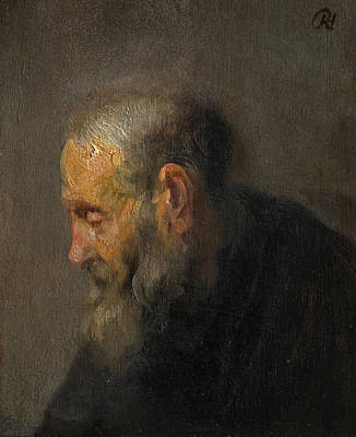 Old Dutch Painting - Study Of An Old Man In Profile by Rembrandt