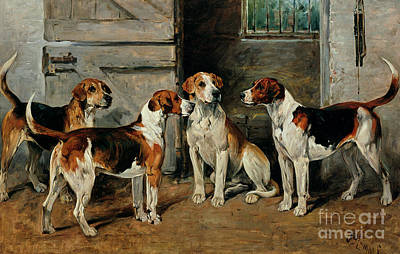 Cats And Dogs Painting - Study Of Hounds by John Emms