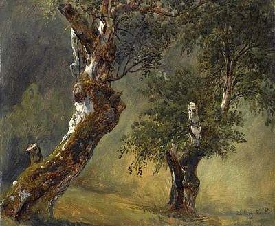 Fearnley Painting - Study Of Trees by Thomas Fearnley