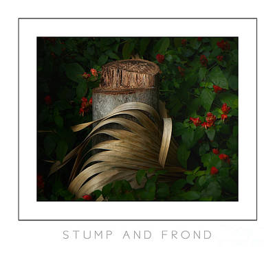 Stump And Frond Poster Art Print by Mike Nellums