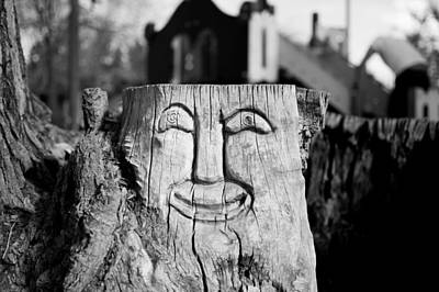 Photograph - Stump Face 1 by Stephen Holst