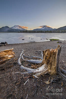 Bend Oregon Photograph - Stump In Morning On Sparks Lake by Twenty Two North Photography