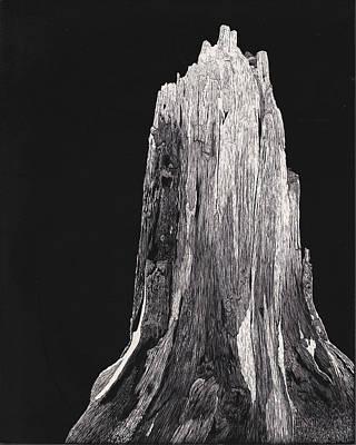 Stockton Drawing - Stump by Pat Price