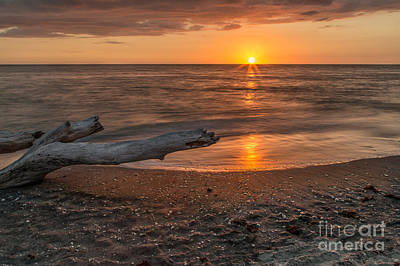 Photograph - Stump Sunset by Karin Pinkham