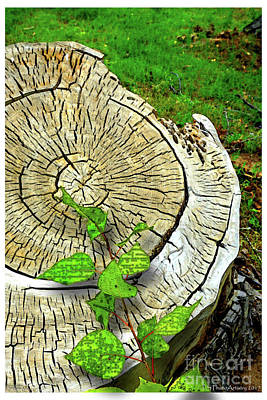 Digital Art - Stump W Leaves by Deborah Nakano