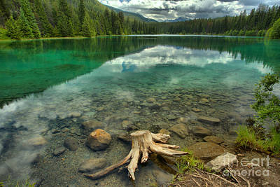 Photograph - Stumped In The Valley Of 5 Lakes by Adam Jewell