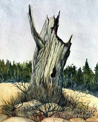 Stumped Original by Joey Nash