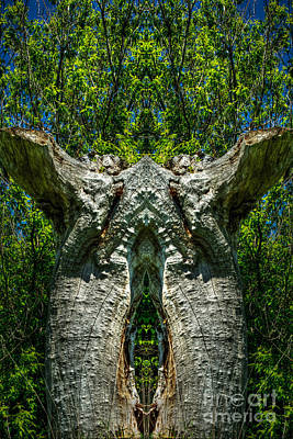 Photograph - Stumped by Roger Monahan