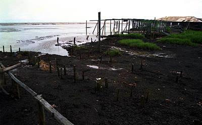 Photograph - Stumps Of Houses by Muyiwa OSIFUYE
