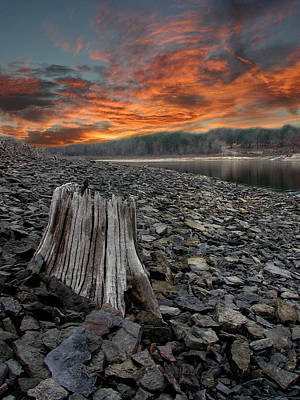 Greers Ferry Lake Photograph - Stumpy Joe by John Franklin