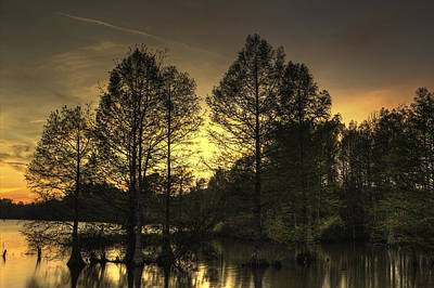 Photograph - Stumpy Lake Iv by Pete Federico