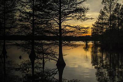 Photograph - Stumpy Lake Natural Area II by Pete Federico