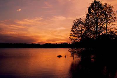 Photograph - Stumpy Lake Natural Area IIi by Pete Federico
