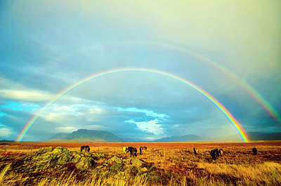 Photograph - Stunning Double Rainbow Iceland by Deborah Smolinske