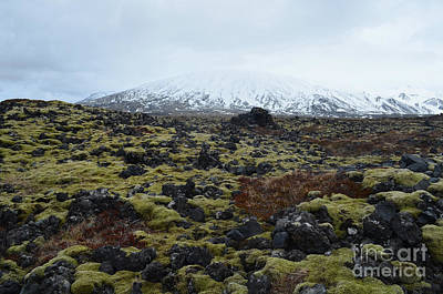 Photograph - Stunning Icelandic Landscape Of A Lava Field And Snow Capped Mou by DejaVu Designs