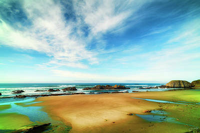 Photograph - Stunning Seal Rock Beach by Dee Browning