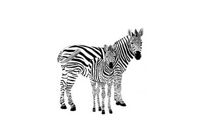 Stylized Zebra With Child Art Print