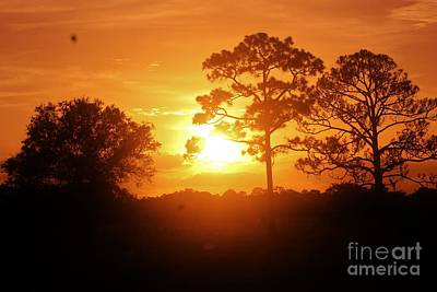 Photograph - Sublime Sunrise by Keri West