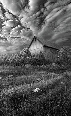 Sublimity Art Print by Phil Koch