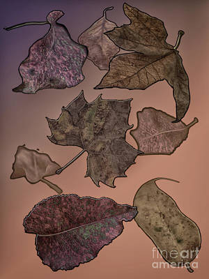 Digital Art - Subtle Autumn by Judy Hall-Folde