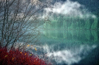 Photograph - Subtle Reflections by Tara Turner