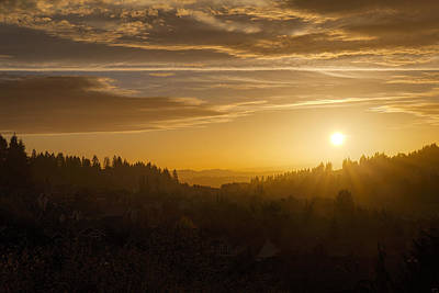 Scenic Photograph - Suburban Golden Sunset by David Gn
