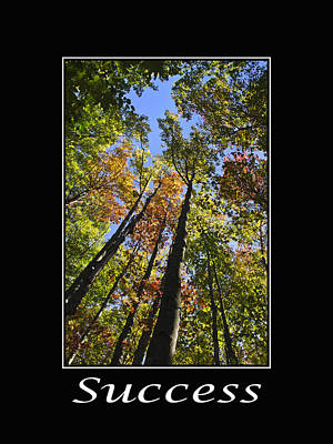 Autumn Trees Mixed Media - Success Inspirational Poster by Christina Rollo