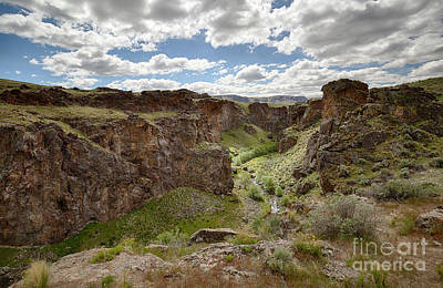 Photograph - Succor Creek Spring by Idaho Scenic Images Linda Lantzy