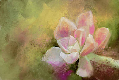 Painting - Succulent In The Garden by Jai Johnson