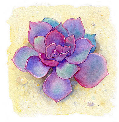 Cactus Wall Art - Painting - Succulent One by Laura Nikiel