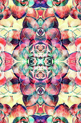 Digital Art - Succulents Abstract by Phil Perkins