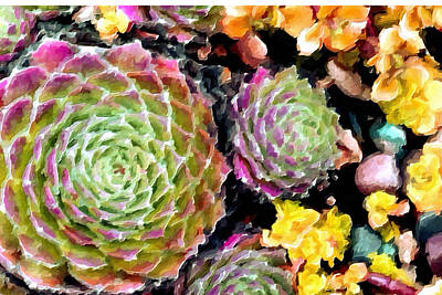 Hens And Chicks Painting - Succulents No4 by Bonnie Bruno