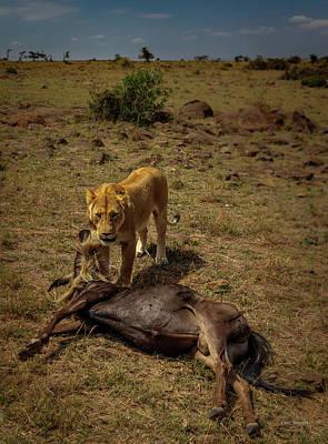 Photograph - Sucess On The Masai-mara, Kenya by Tim Bryan