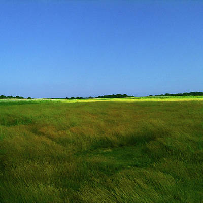 Photograph - Suffolk Sunshine by Anne Kotan