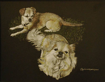 Watercolor Pet Portraits Drawing - Sugar And Spike by E M Sutherland