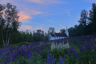 Superhero Ice Pop Rights Managed Images - Sugar Hill Lupines and Church at Sunset Royalty-Free Image by John Burk