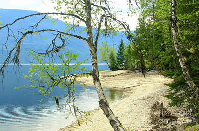 Photograph - Sugar Lake Beach by Frank Townsley